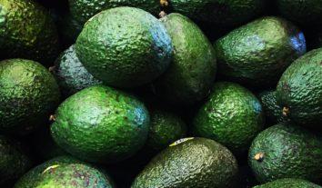 Emagrecimento: Veja os 5 alimentos mais indicados para promover saciedade