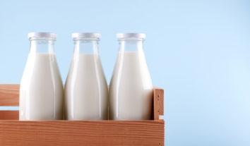 Conheça os vários tipos de leite e escolha o melhor para a sua saúde